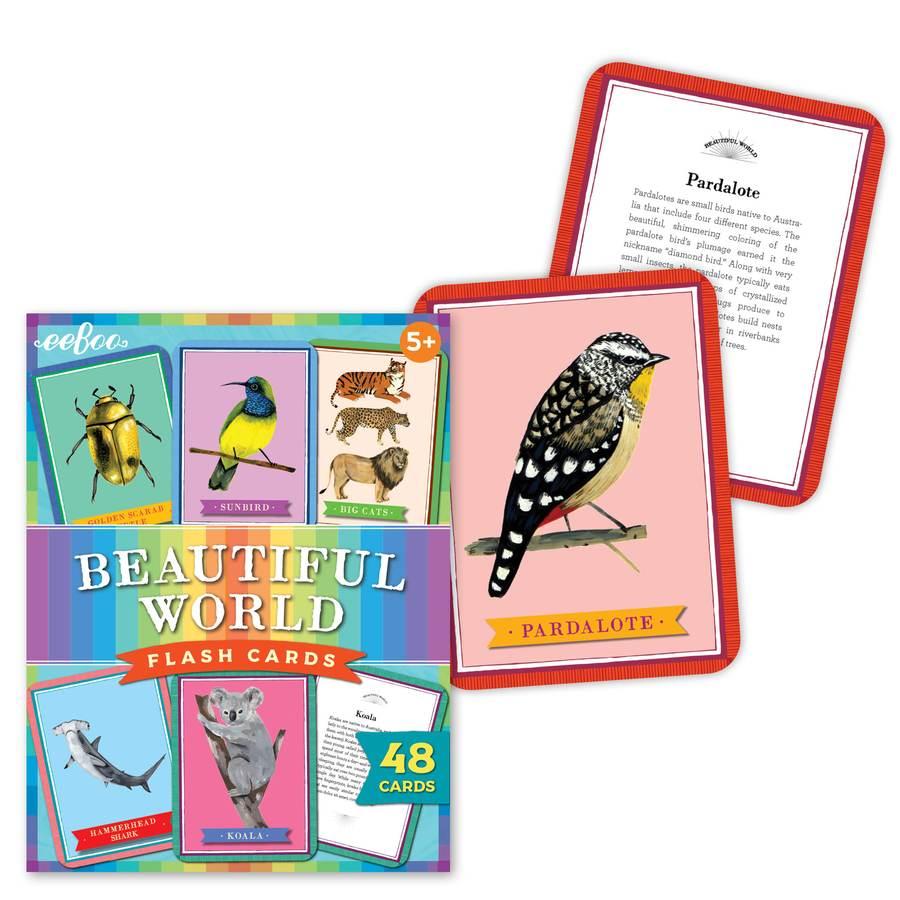 Beautiful World Flashcards