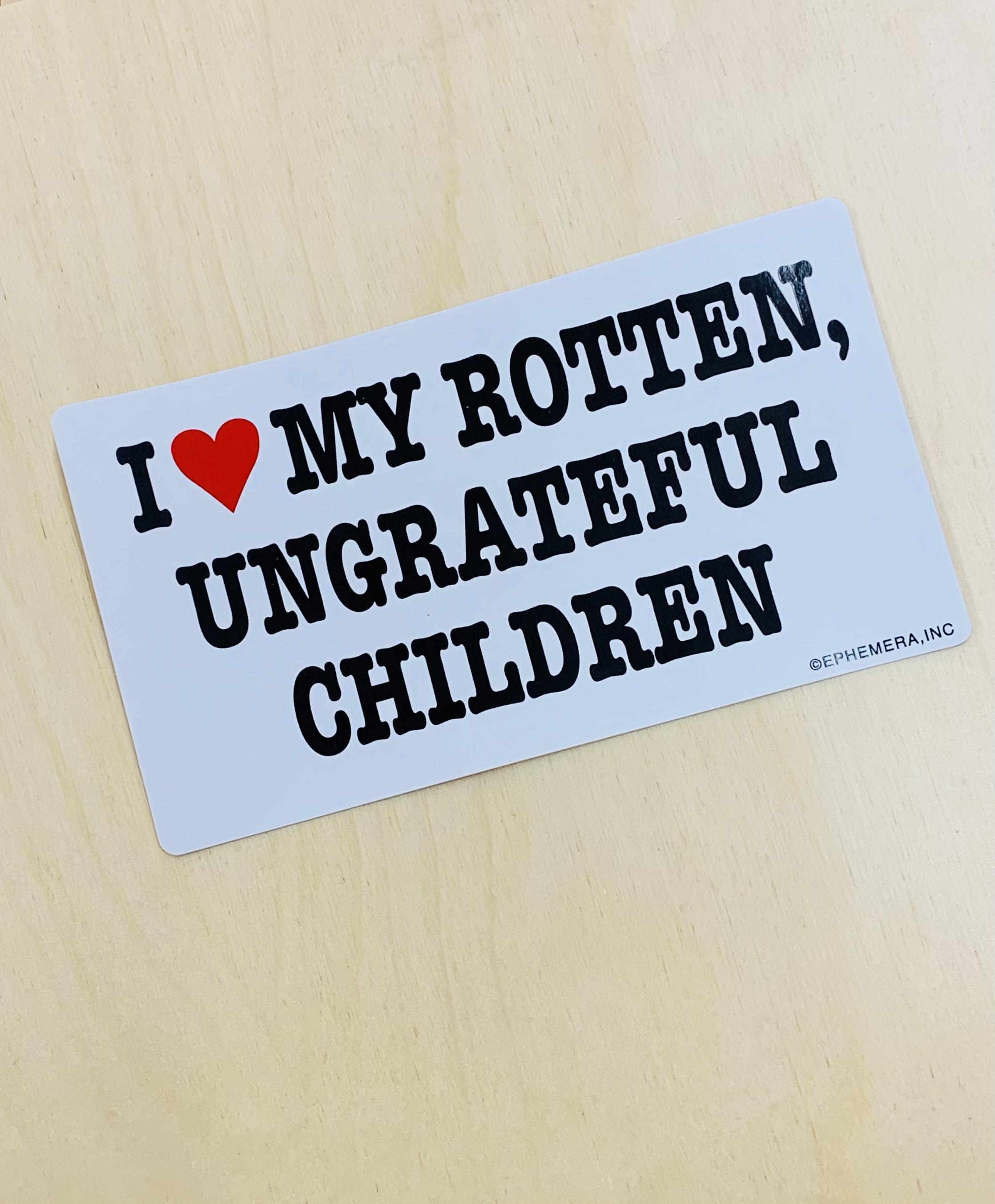 I Love My Rotten Children Bumper Sticker