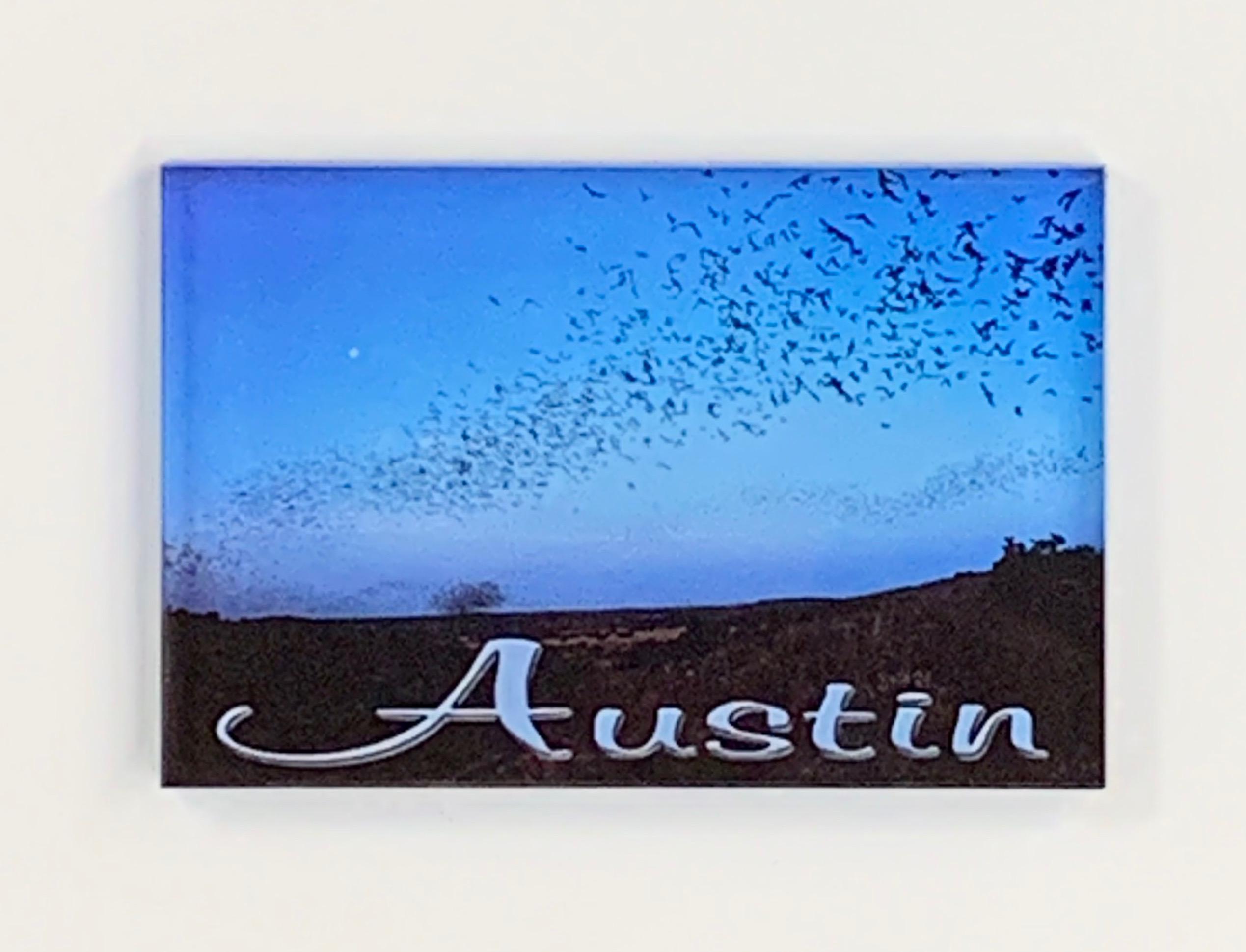 Austin Bats Magnet
