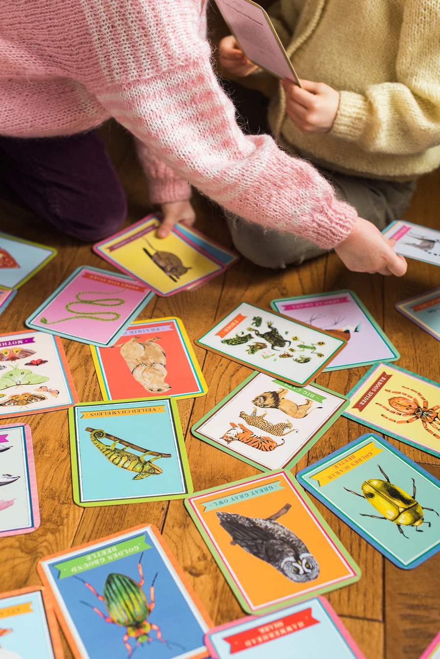 Beautiful World Flashcards in action