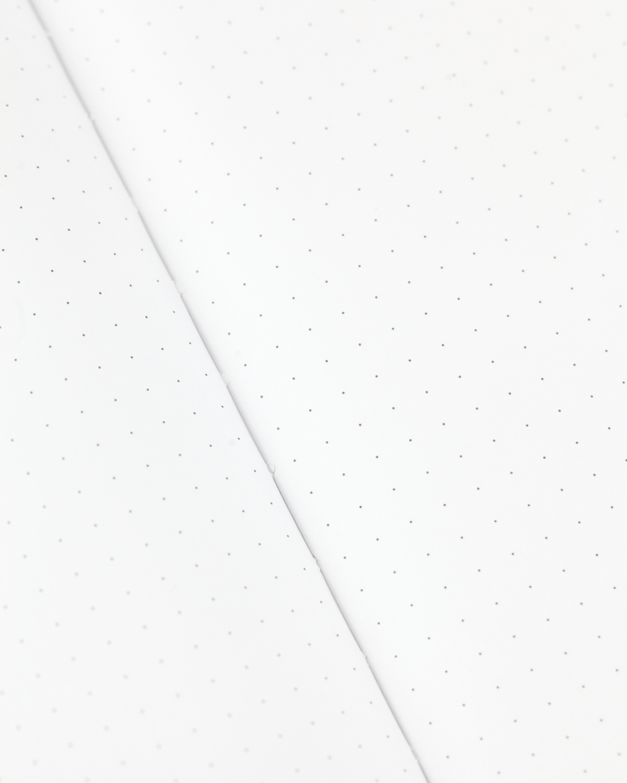 Dot grid pages inside