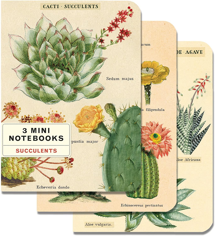 Cacti & Succulents Mini Notebook Set
