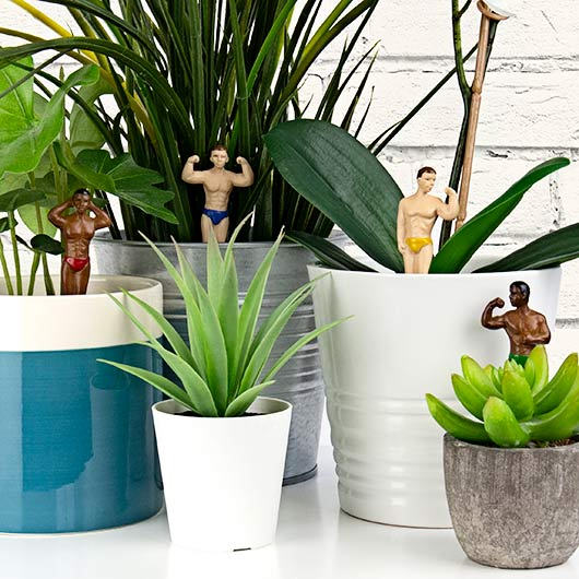 Mini Hunks Potted Plant Markers in action