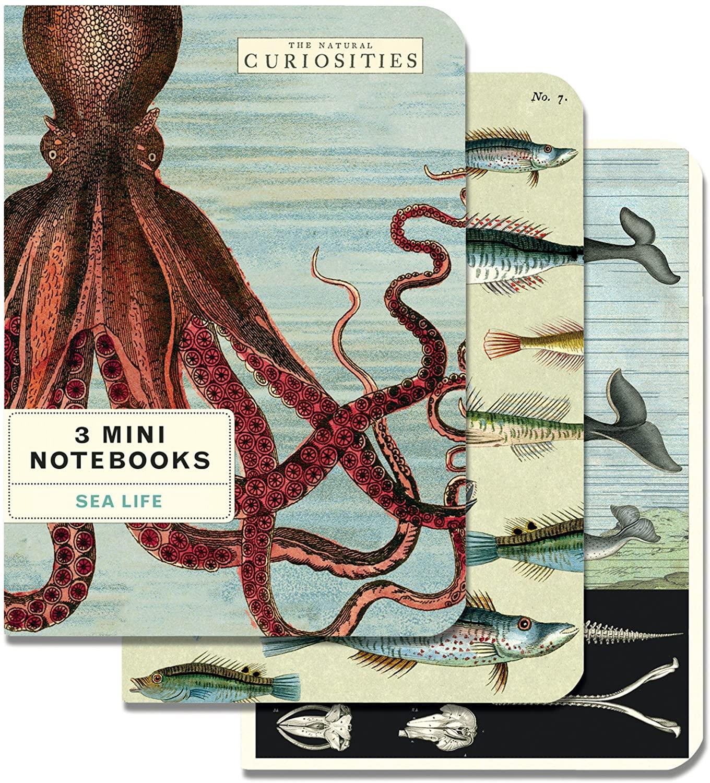 Sea Life Mini Notebook Set