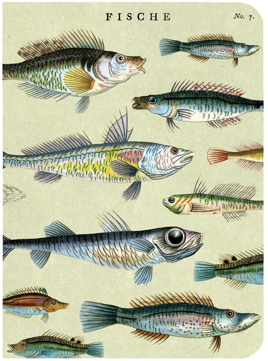 Fish Mini Notebook included