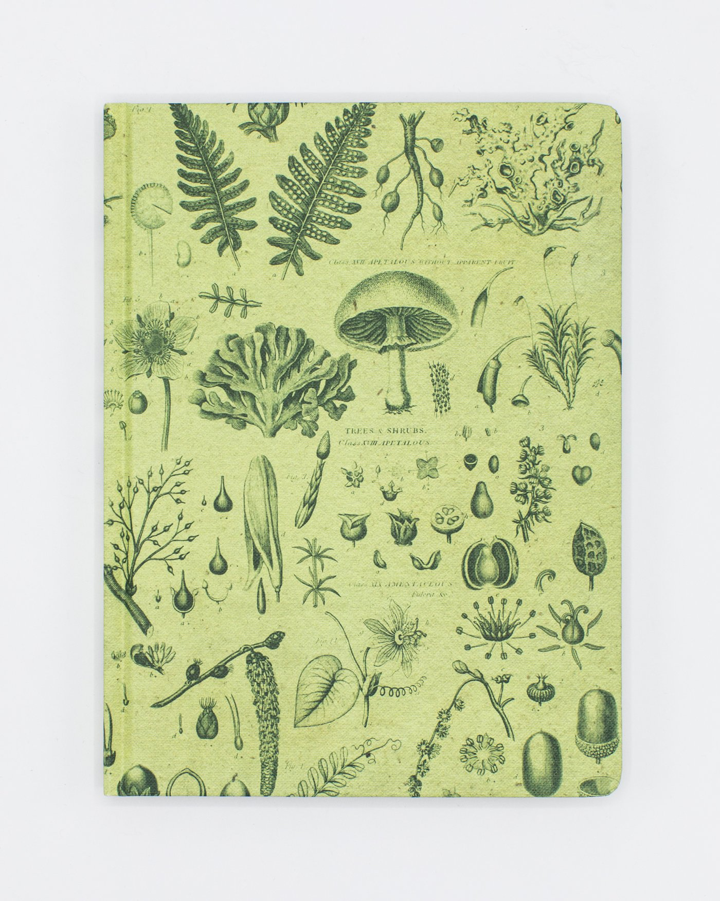 Front cover of Plants & Fungi Notebook