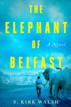 The Elephant of Belfast Cover