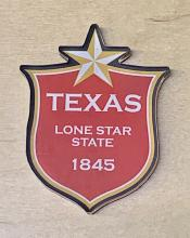 Texas: The Lone Star State Magnet