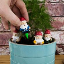 Mini Gnomes Potted Plant Markers in action