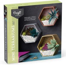 Mini Terrariums Craft Kit