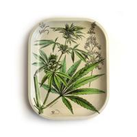 Cannabis illustrations on a cream background